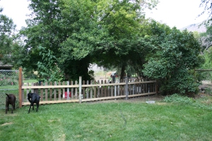 New picket fence